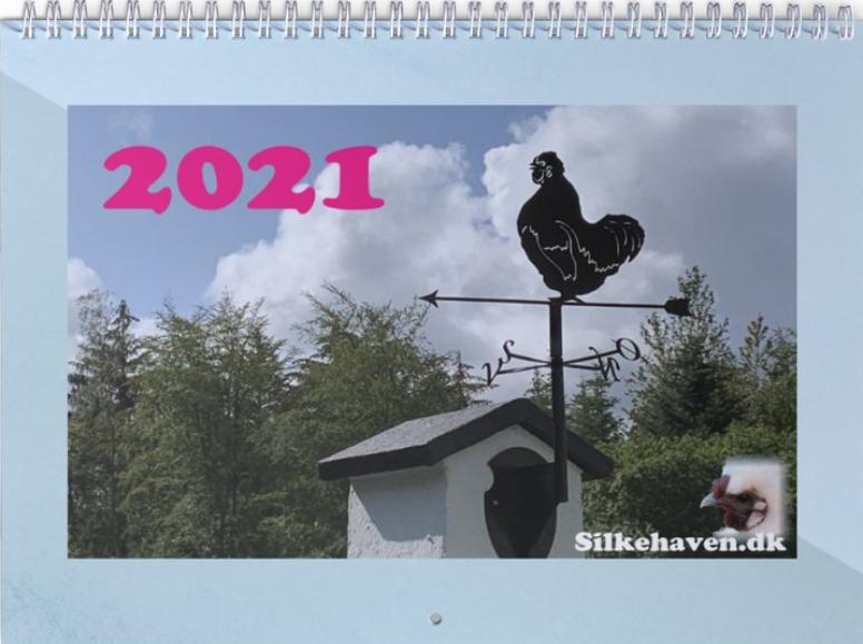 silkehønse kalender 2021 forside