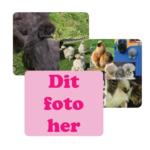 musemåtte - eget foto med flere slags